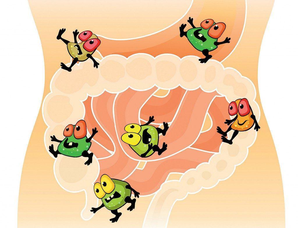Как лечить дисбактериоз кишечника у взрослых