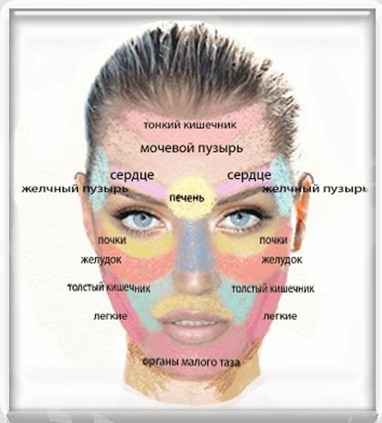 Локализация прыщей на лице в зависимости от заболевания органов