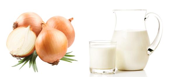 Молочно-луковый отвар - эффективное средство при остром воспалительном процессе