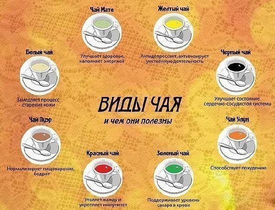 Чем полезны разные виды чая