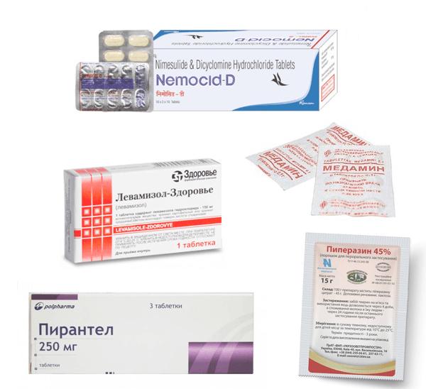 Универсальный препарат от глистов у человека