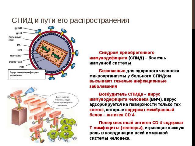 Пути распространения СПИД