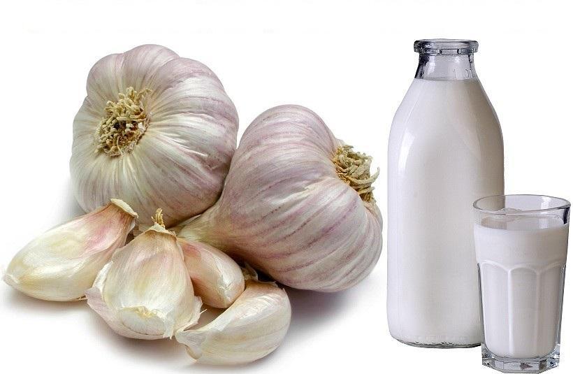 Чеснок и молоко - отличные помощники в снижении давления