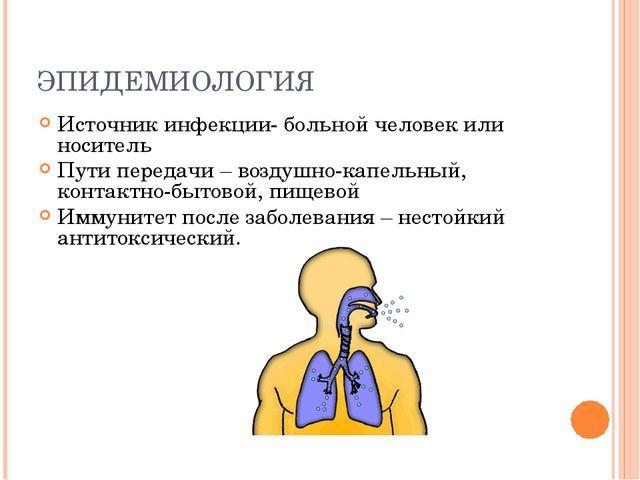 Эпидемиология коклюша