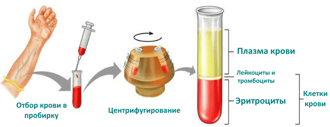 Анализ на гематокрит