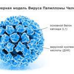 Как лечить вирус папилломы человека у женщин