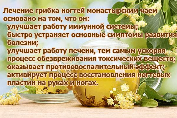 Лечение грибка ногтей монастырским чаем