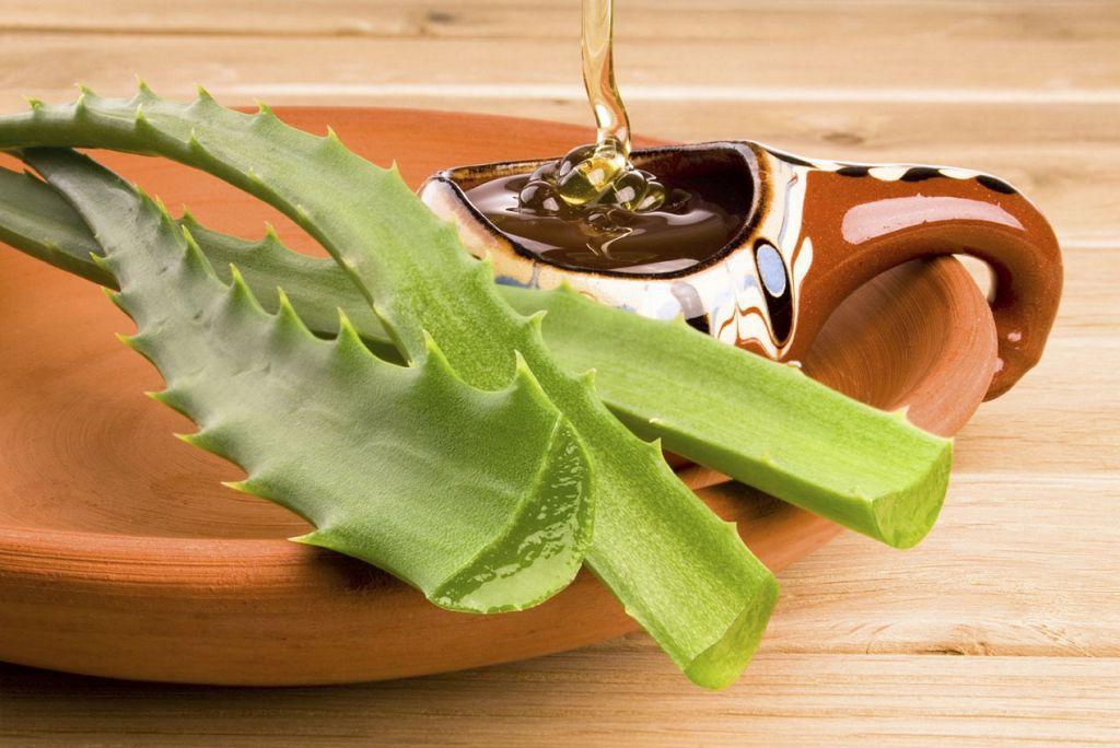 Мед и алоэ - эффективное средство в лечении гастрита