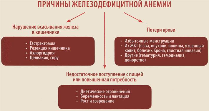 Основные причины железодефицитной анемии