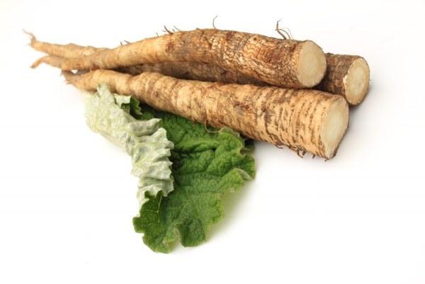 Отвар из корня лопуха - отличное средство для лечения гастрита