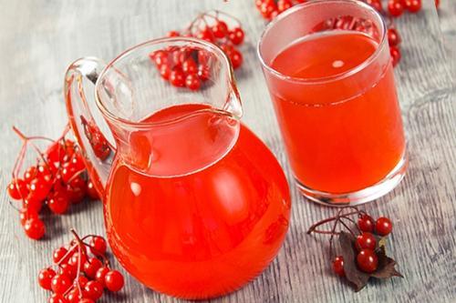 При первых проявлениях скарлатины рекомендуется начать лечение калиновым соком