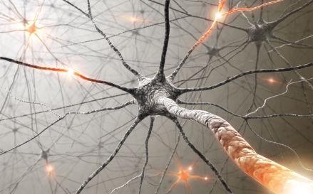 Рассеянный склероз: срок жизни - Гид-медик
