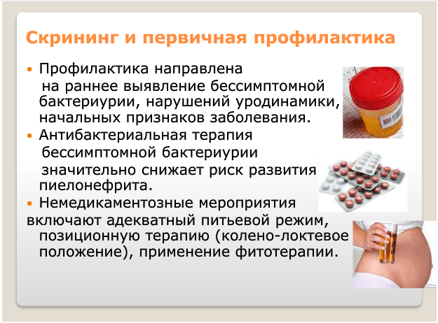 Скрининг и первичная профилактика при пиелонефрите