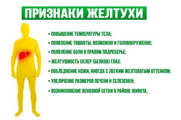Признаки желтухи у взрослых