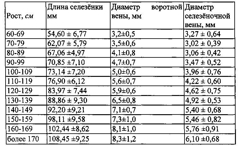 Размер селезенки в зависимости от роста человека