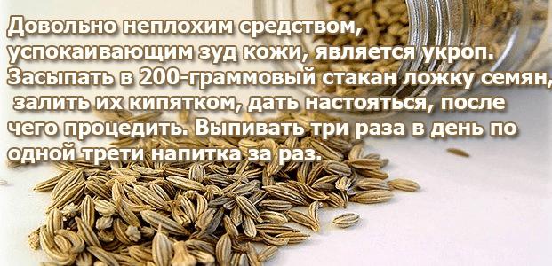 Семена укропа от зуда кожи