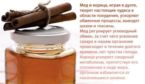 Польза медового обертывания с корицей