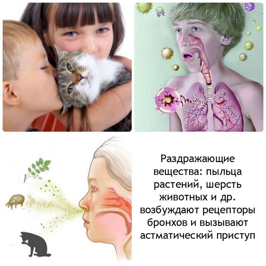 Раздражающие вещества, что вызывают астматический приступ