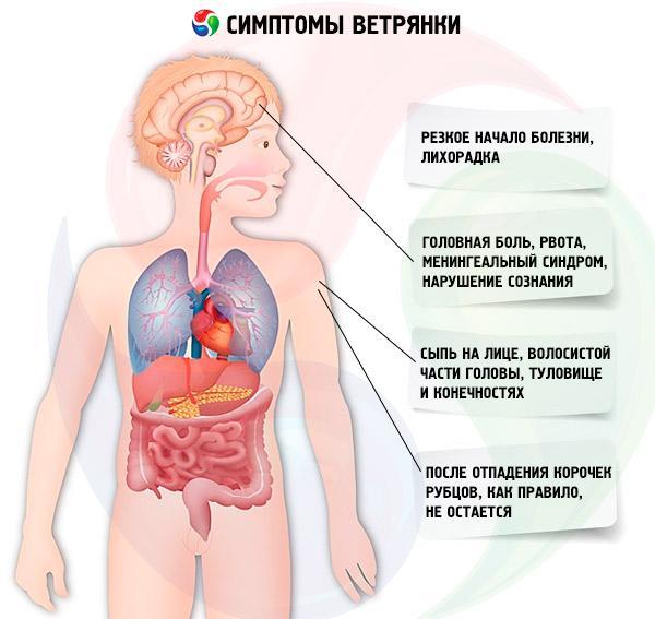 Детские болезни с высыпаниями на коже - заболевания, причины, симптомы и лечение