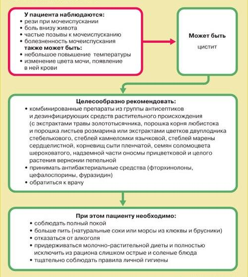 Схема лечения цистита