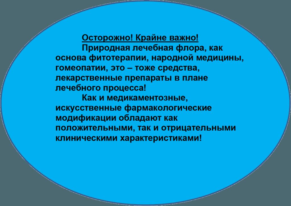 Важная информация о гомеопатии