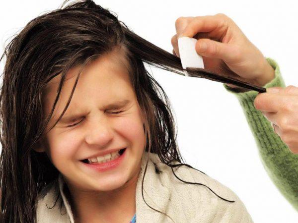 Вши у детей: лечение в домашних условиях