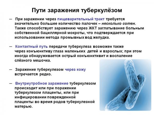 Как еще можно заразиться туберкулезом