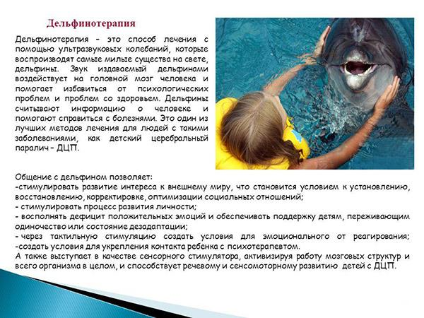 Лечение ДЦП дельфинотерапией