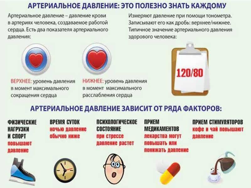 Полезная информация о артериальном давлении
