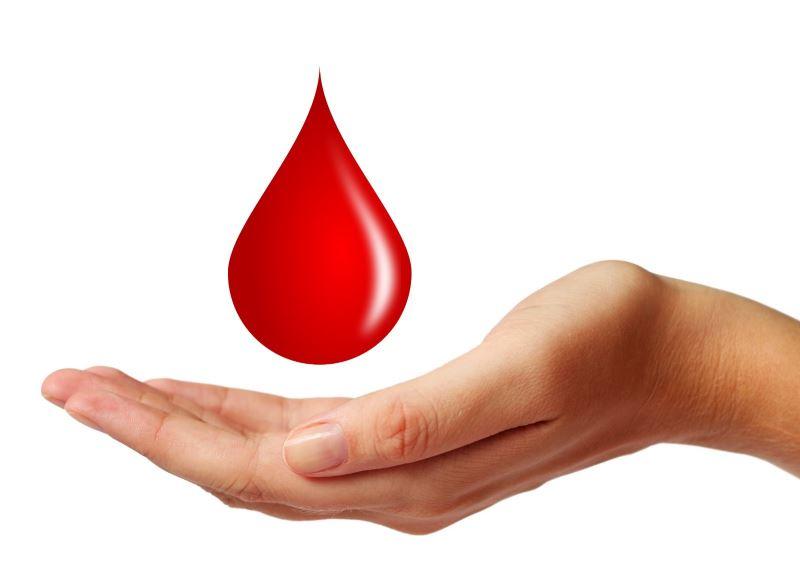 Причины кровотечения из заднего прохода