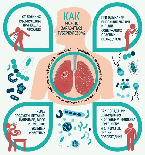 Пути инфицирования туберкулезом