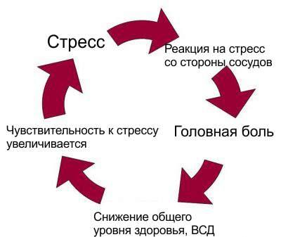 Развитие ВСД