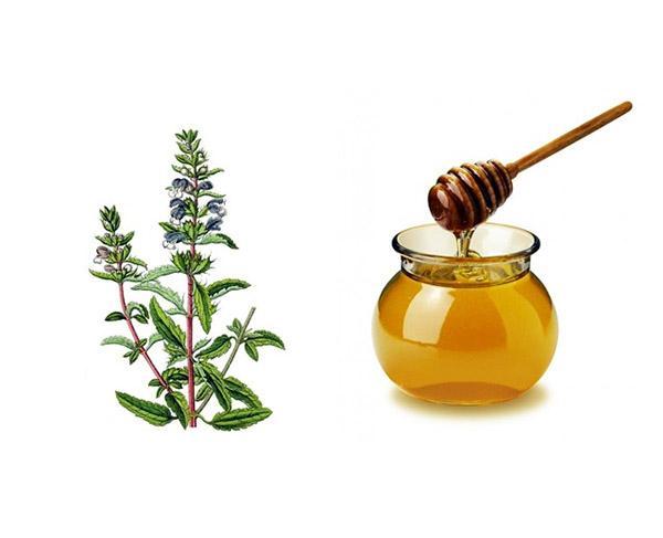 Смесь меда и пустырника способна за короткое время нормализовать пульс