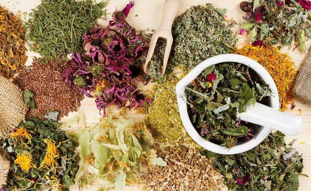 Травяные сборы - это хорошее средство против варикоза