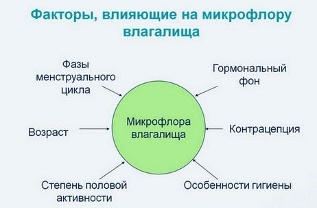 Факторы которое влияют на микрофлору влагалища
