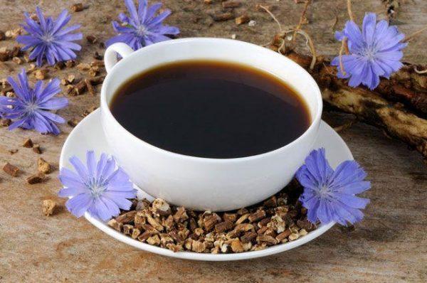 Цикорий как заменитель кофе