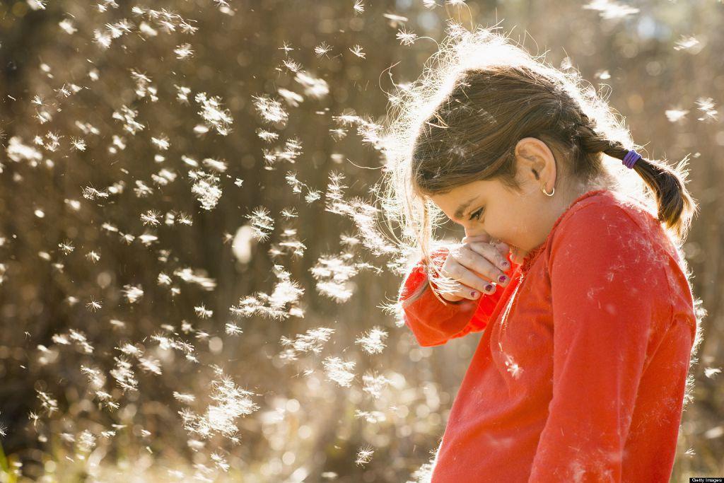 Бронхит может быть на фоне аллергической реакции, например на тополиный пух