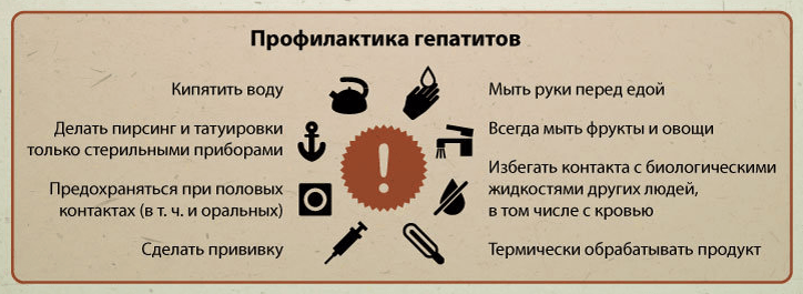 Профилактика гепатитов - MedExplorer - информационный сайт о ...
