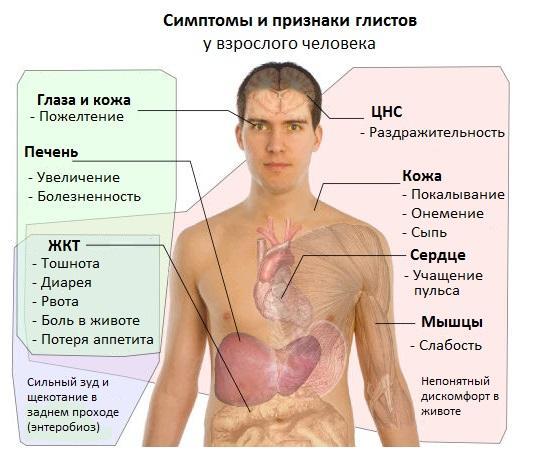 признаки паразитов у человека
