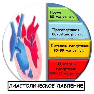 Норма и отклонения диастолического давления