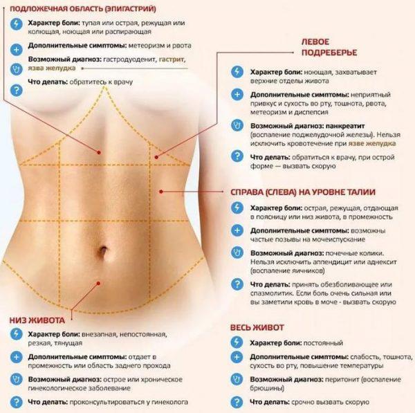 Возможные заболевания в зависимости от локализации боли