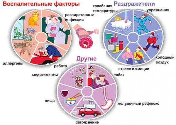 Воспалительные процессы и раздражители астмы