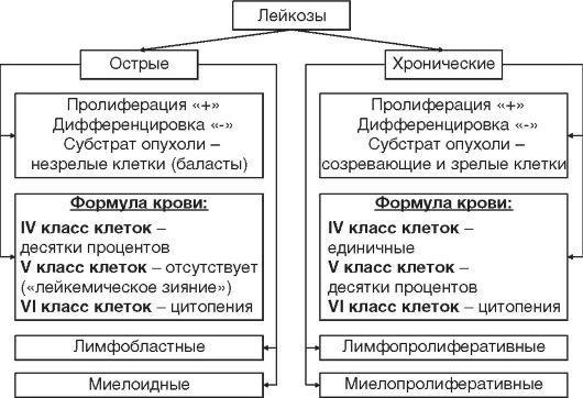 Классификация лейкозов