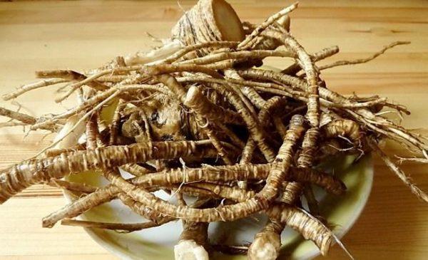 Настойка на корне аира увеличивает потенцию, успокаивает нервы, предотвращает развитие депрессии и нервного истощения