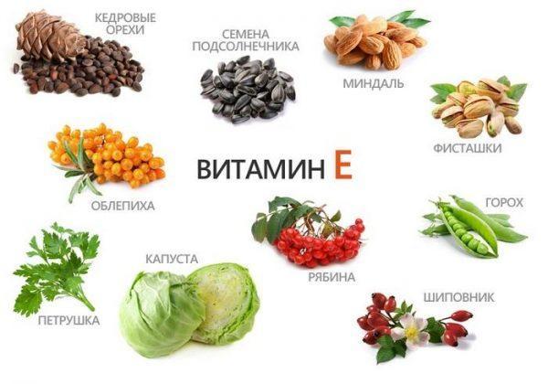 Продукты, содержащие высокое количество витамина Е