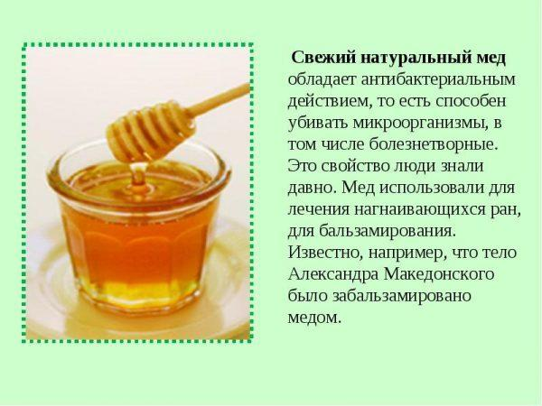 Свойства меда