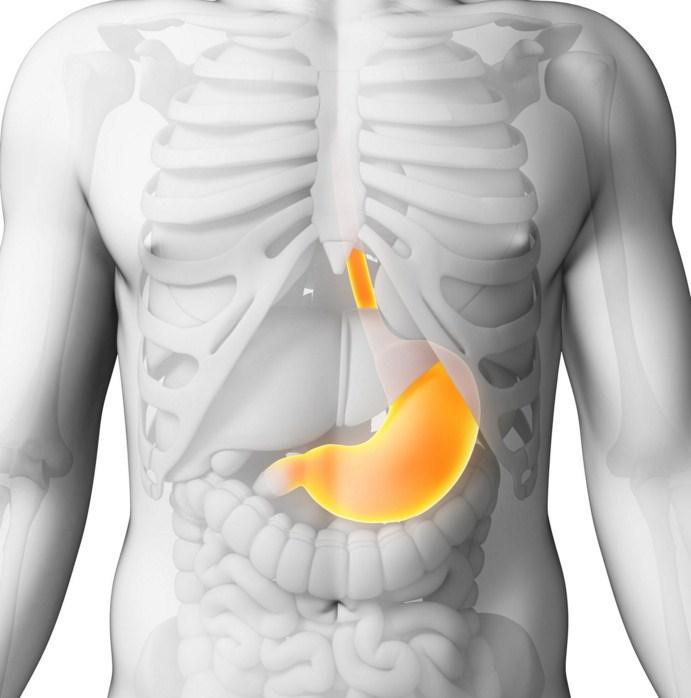 Хронический гастрит диета 5 13