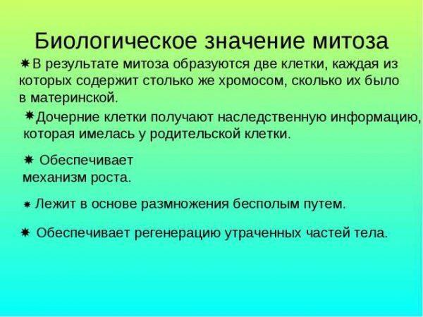 Биологическое значение митоза
