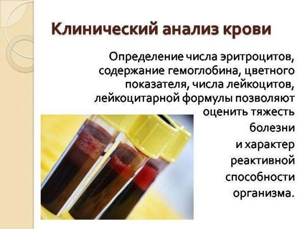 Зачем сдавать клинический анализ крови