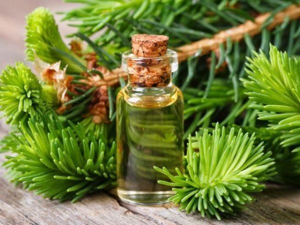 Ингаляции с маслами обладают бактерицидным, увлажняющим и противоотечным действием
